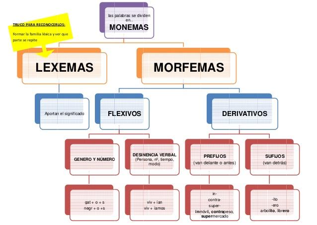 morfemas-y-lexemas-1-638